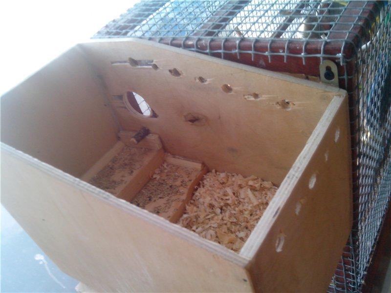 Как сделать гнездо для попугаев своими 286